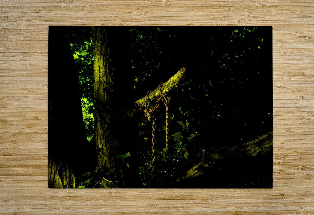 B (4)  HD Metal print with Floating Frame on Back