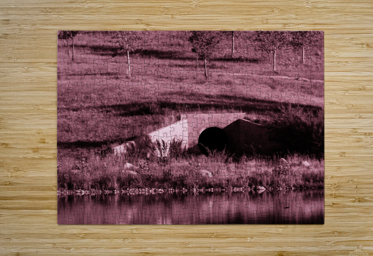 B (12)  HD Metal print with Floating Frame on Back