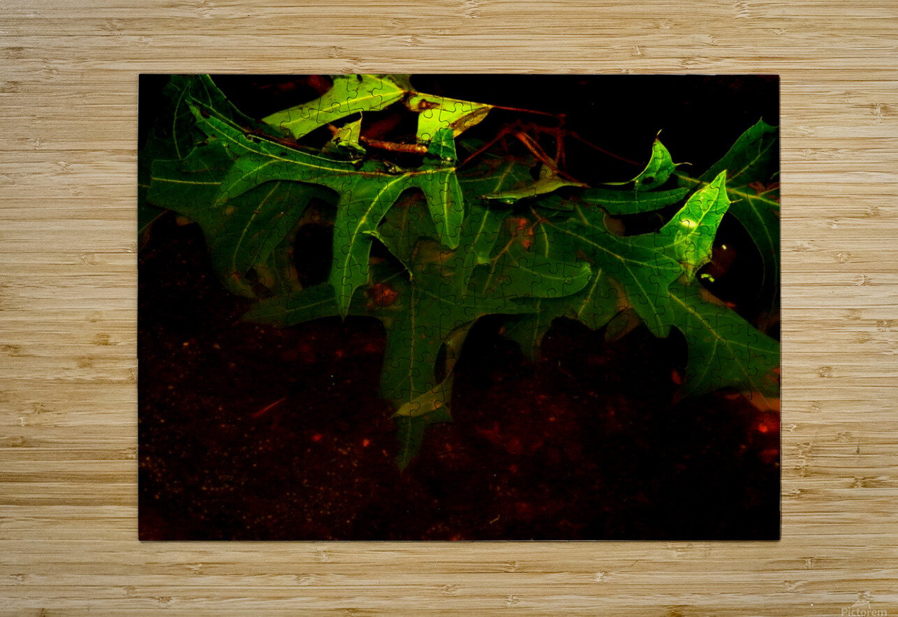C (14)  HD Metal print with Floating Frame on Back