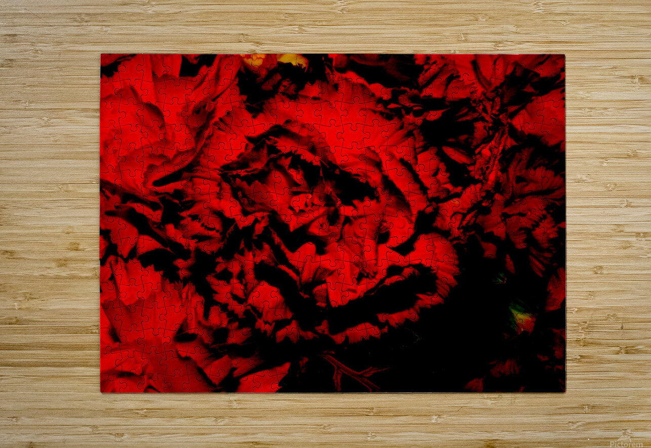 D (7)  HD Metal print with Floating Frame on Back