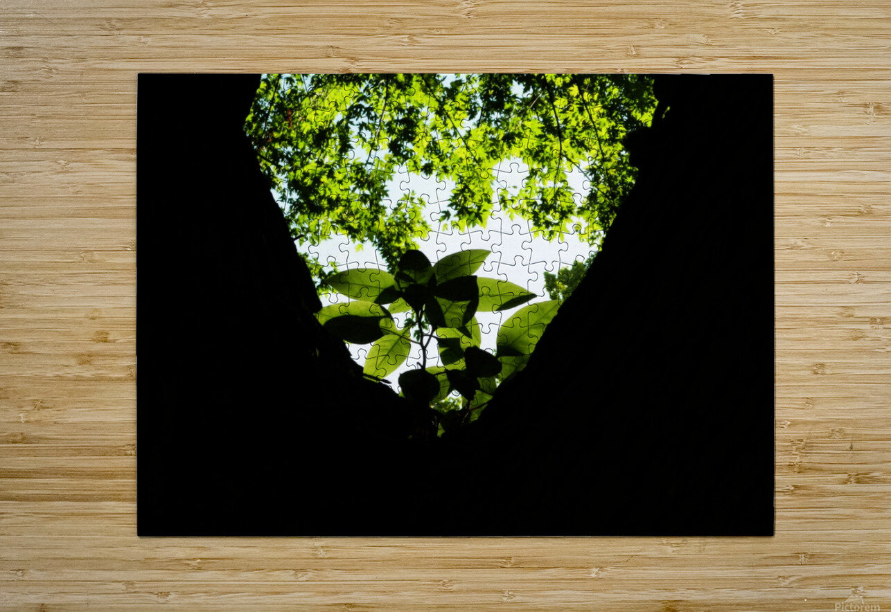 F (4)  HD Metal print with Floating Frame on Back