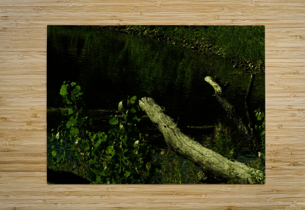 H (6)  HD Metal print with Floating Frame on Back