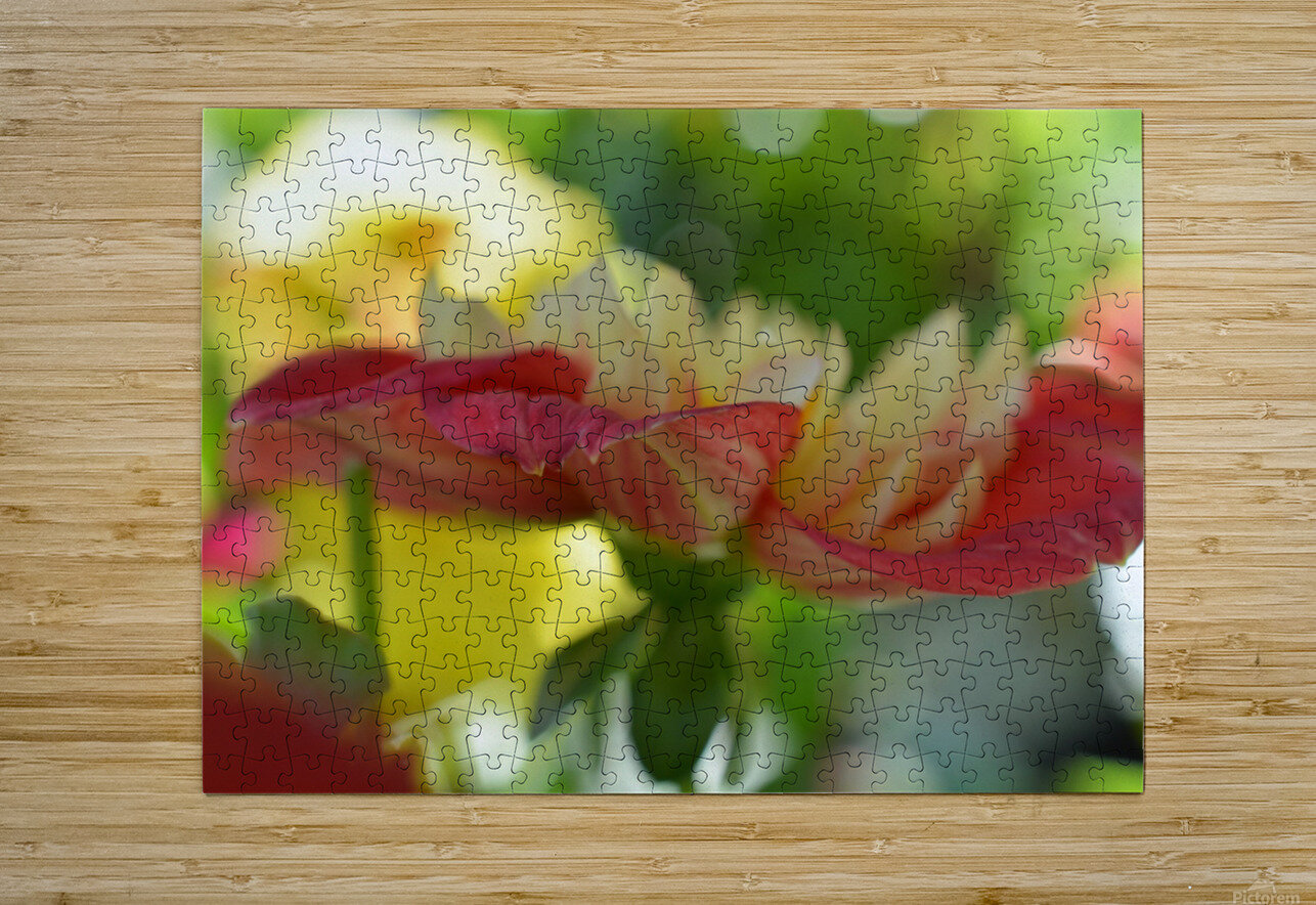 Garden Flowers Art Photograph  HD Metal print with Floating Frame on Back