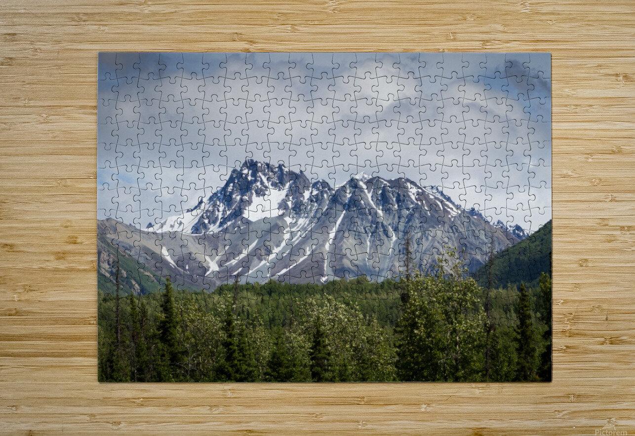 Alaska Mountain Range  HD Metal print with Floating Frame on Back