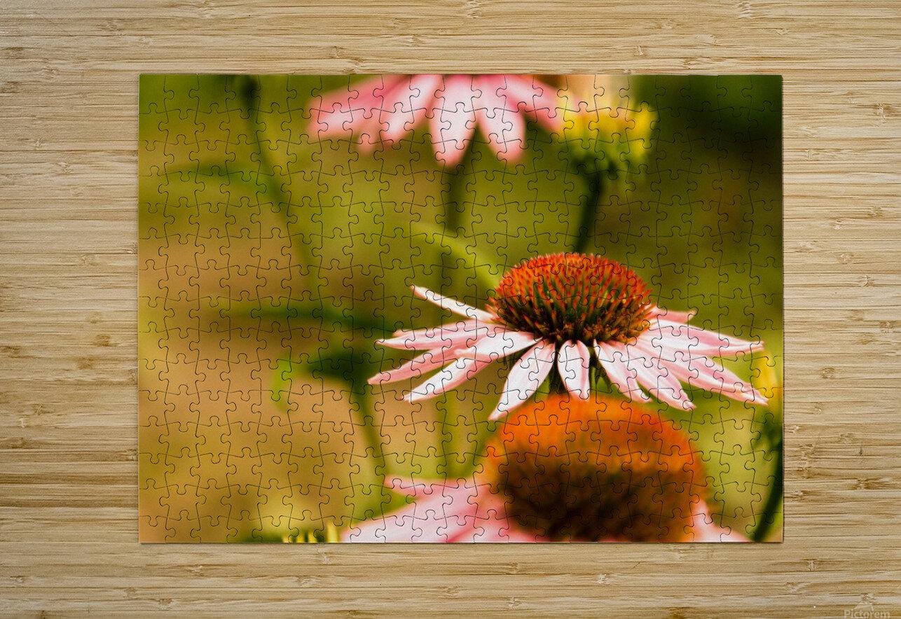 Like Sunflowers  HD Metal print with Floating Frame on Back
