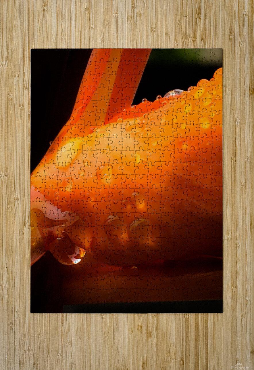 Sweet Orange sweat  Impression métal HD avec cadre flottant sur le dos