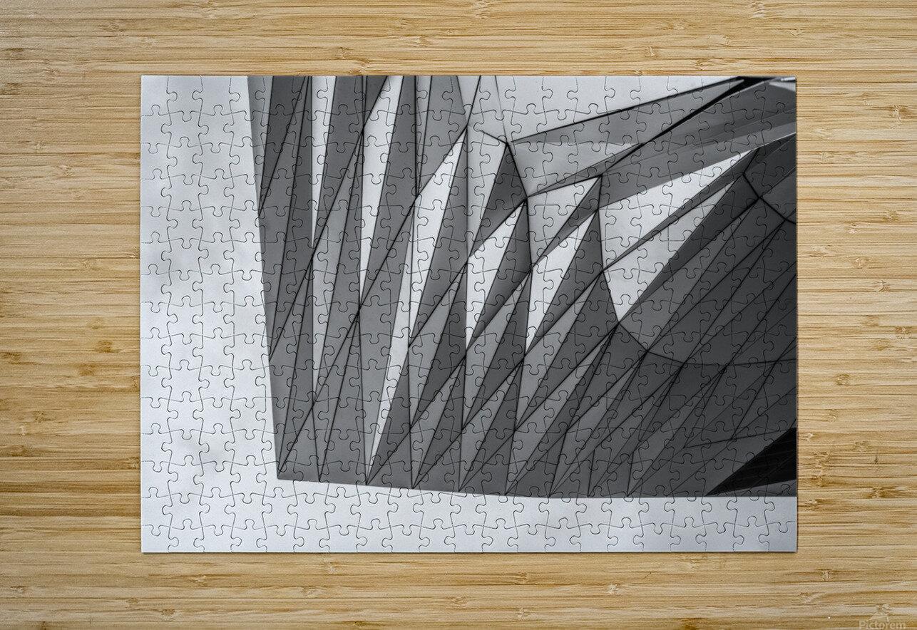 Musée des Confluences  HD Metal print with Floating Frame on Back