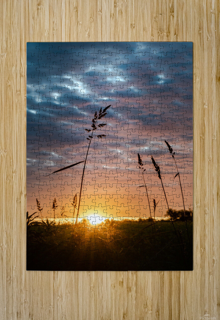 First Light  HD Metal print with Floating Frame on Back