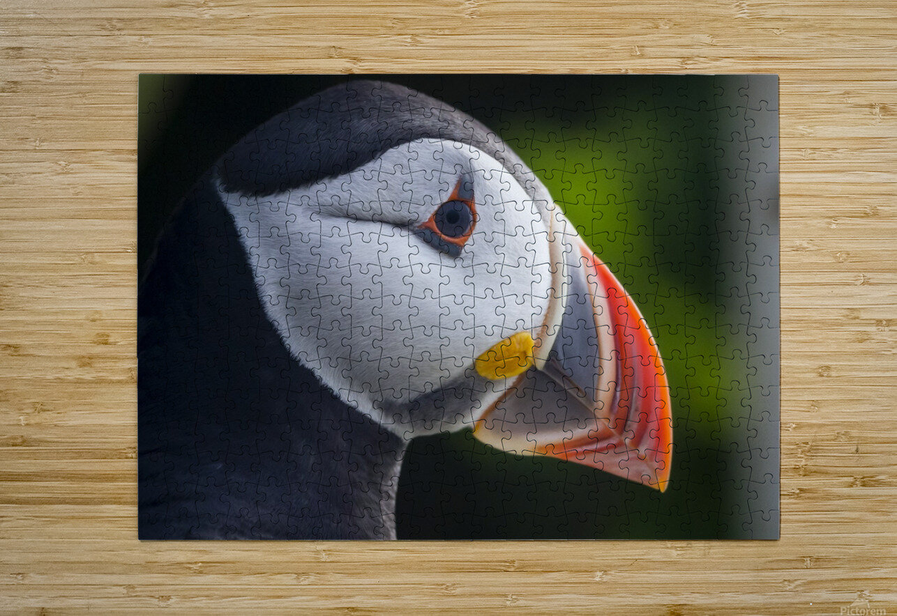 _49R9426 Modifier 2  HD Metal print with Floating Frame on Back