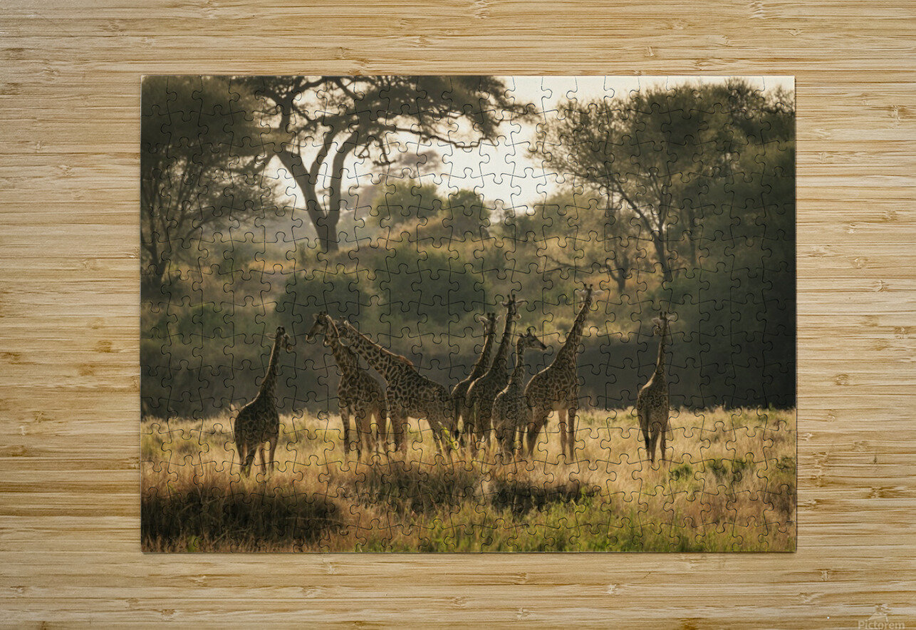 _49R8818  HD Metal print with Floating Frame on Back