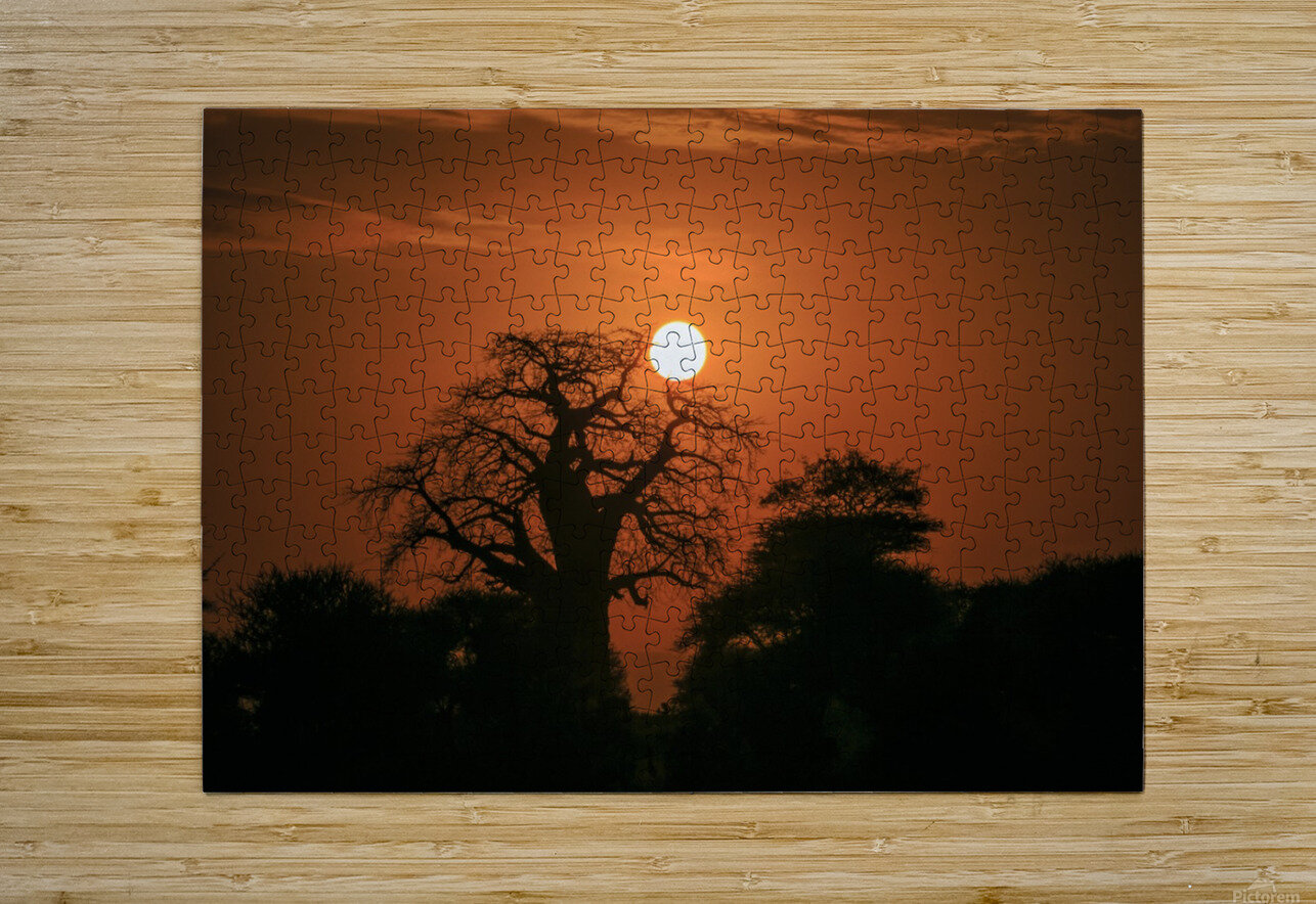 _49R8851  HD Metal print with Floating Frame on Back