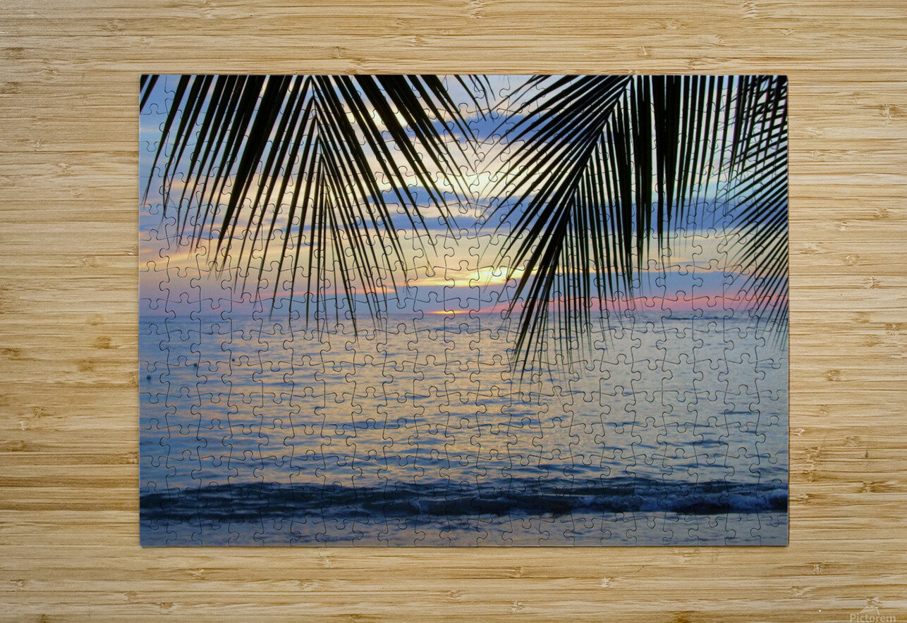 Tropical Sunset 4  HD Metal print with Floating Frame on Back