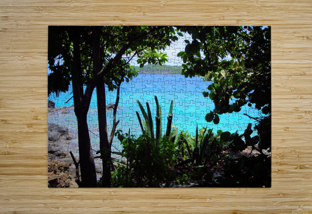 Tropical Waters 1  HD Metal print with Floating Frame on Back