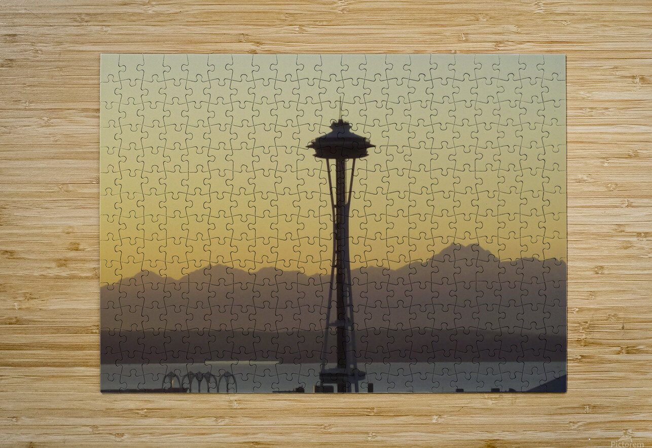 needle  HD Metal print with Floating Frame on Back