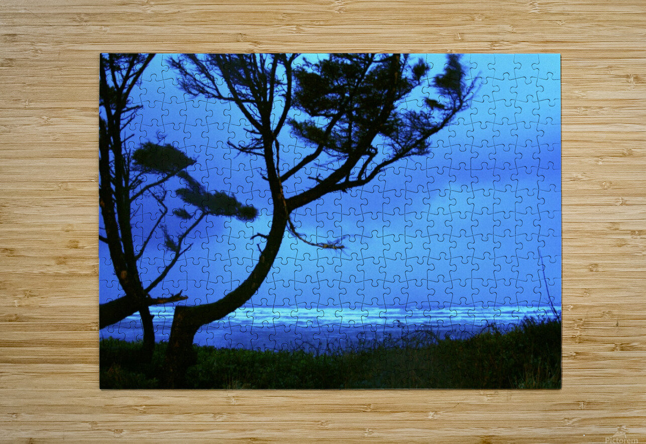 Long Exposure Night Coast  HD Metal print with Floating Frame on Back