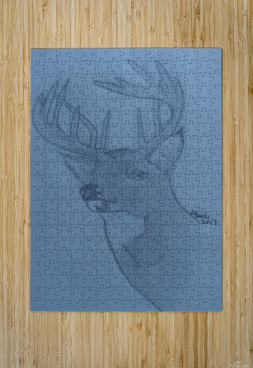 Maine Deer  HD Metal print with Floating Frame on Back