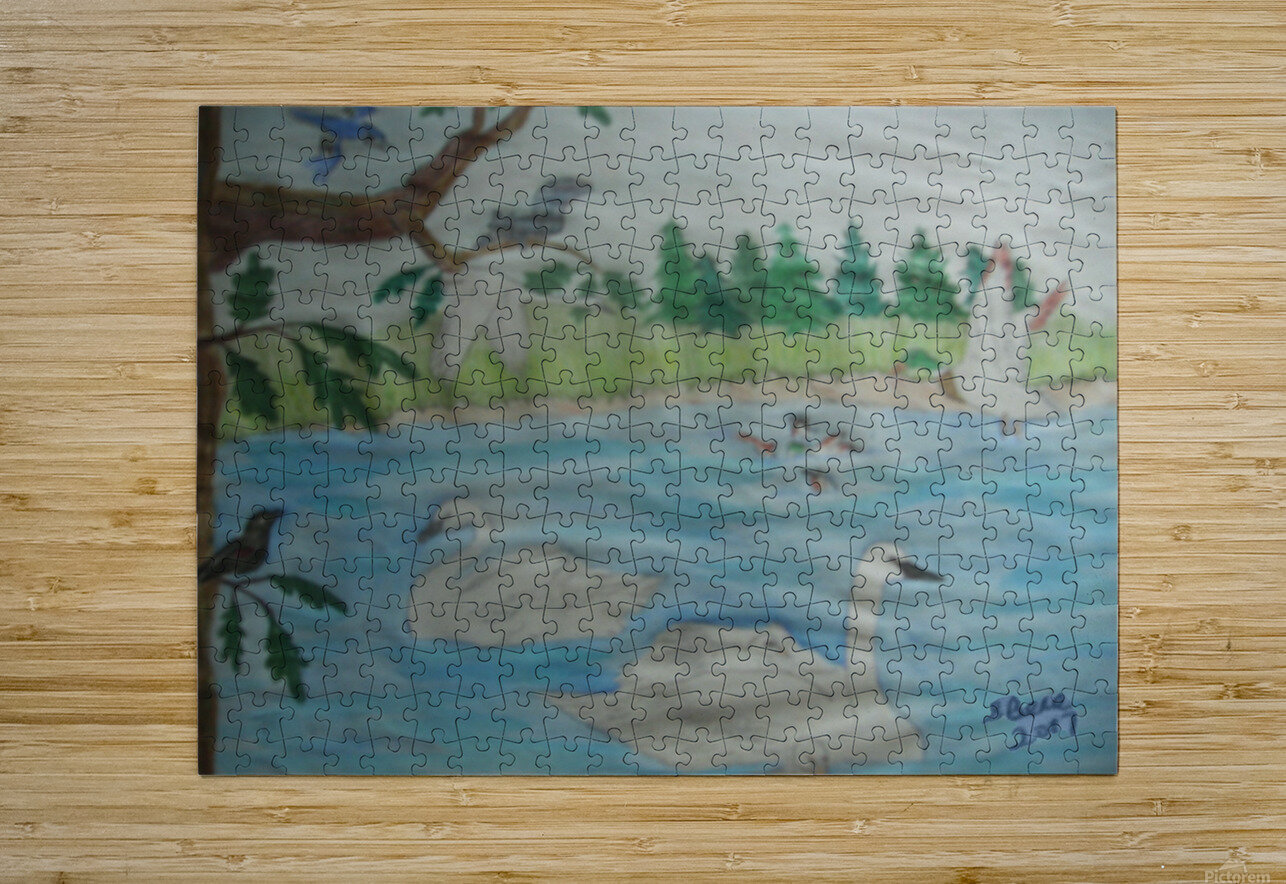 Swan Pond  HD Metal print with Floating Frame on Back