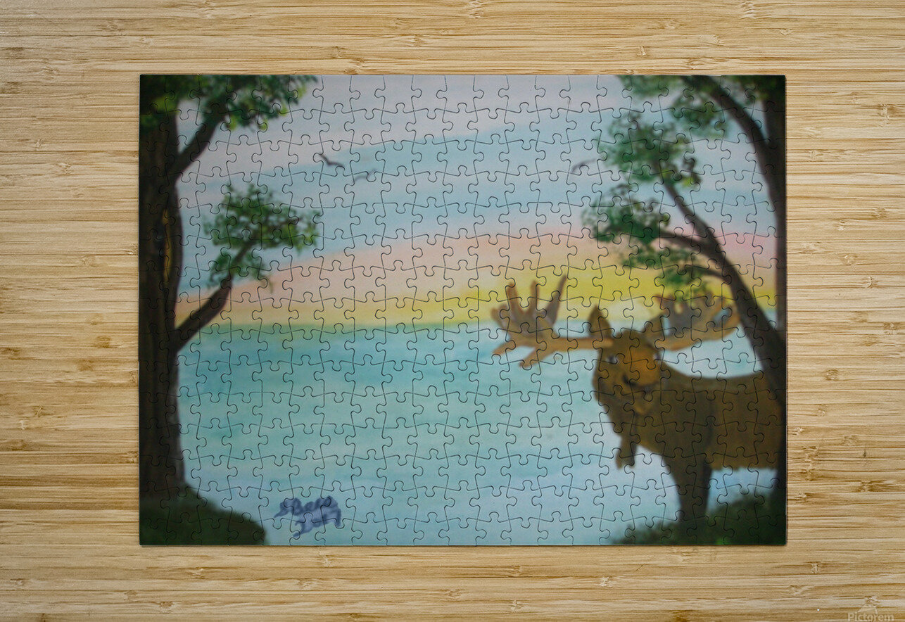 Maine Moose  HD Metal print with Floating Frame on Back