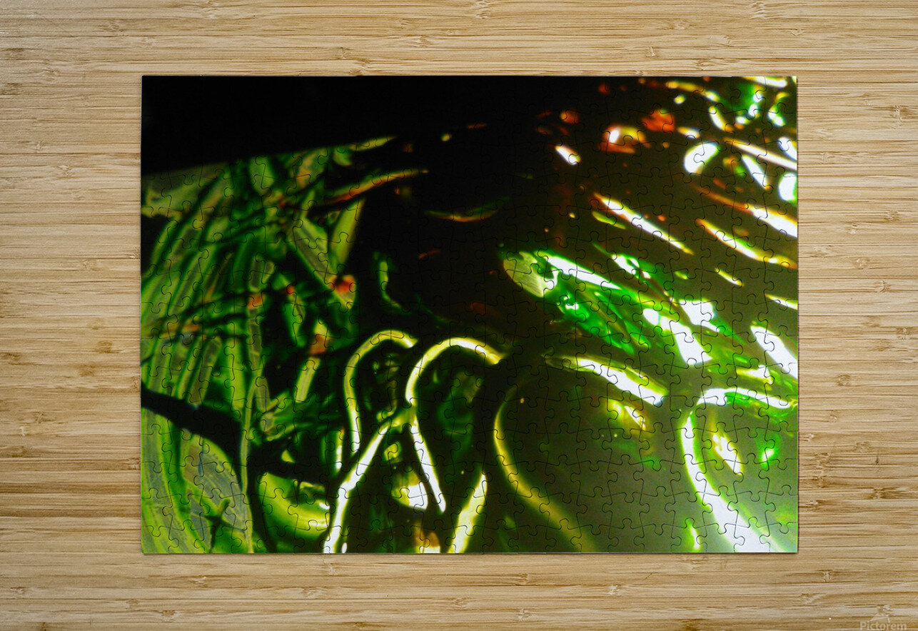 IMG_20181004_073640  HD Metal print with Floating Frame on Back