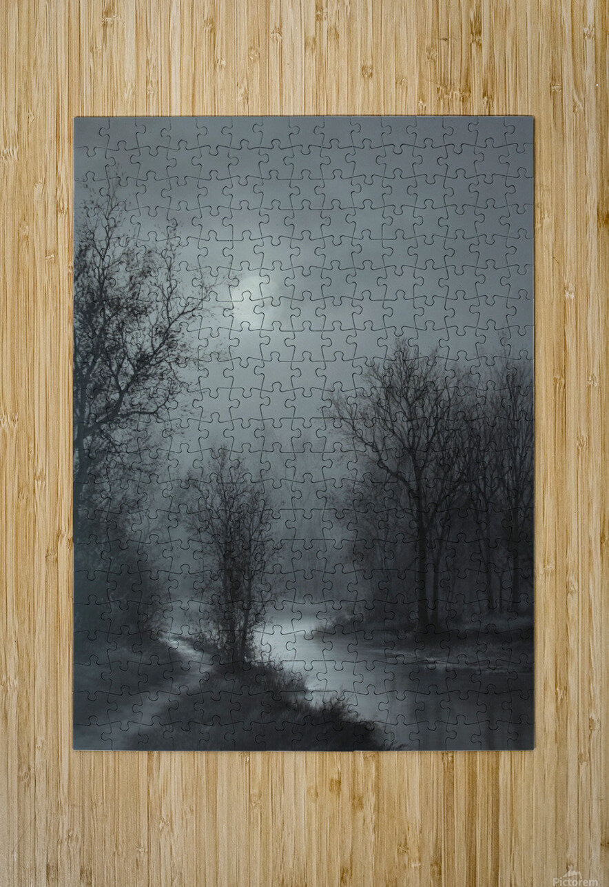 Hint of Sunlight  HD Metal print with Floating Frame on Back