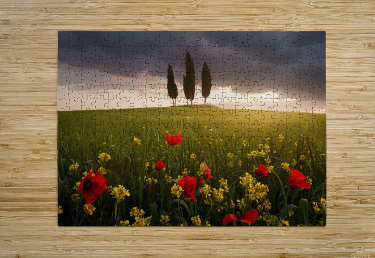 Blooming Tuscany  HD Metal print with Floating Frame on Back