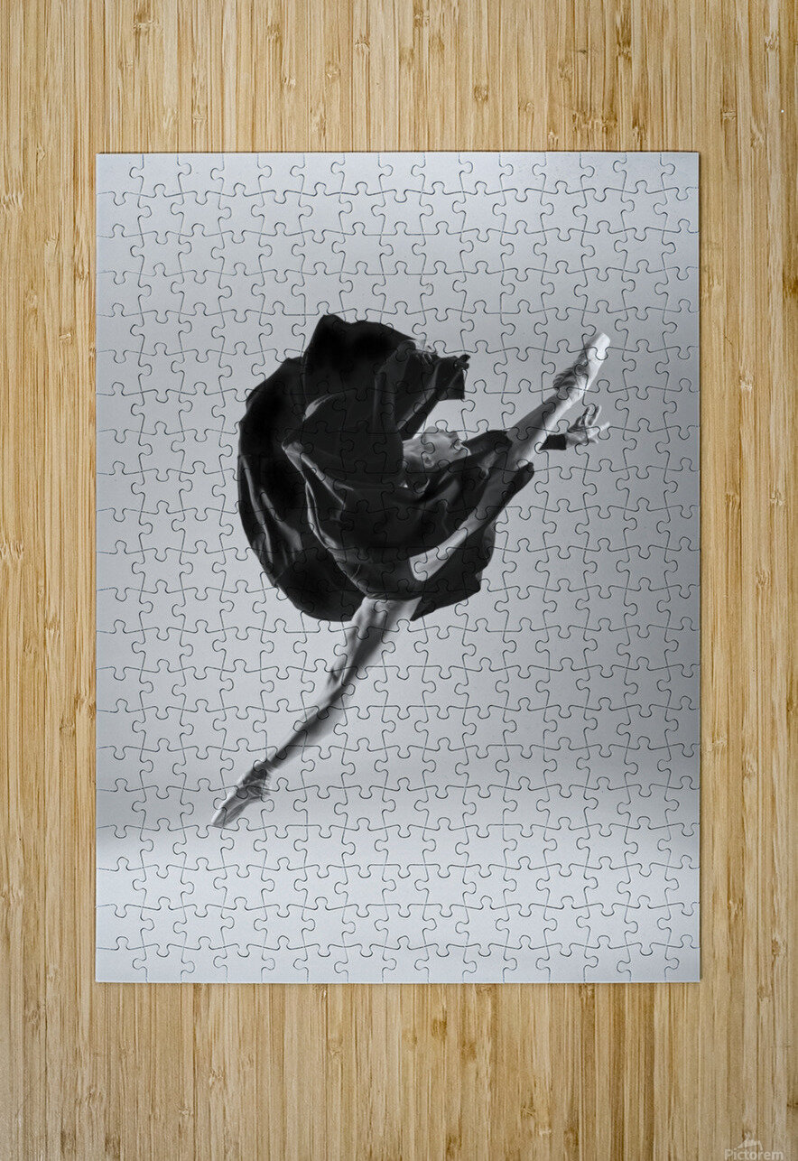 Ballerina  HD Metal print with Floating Frame on Back