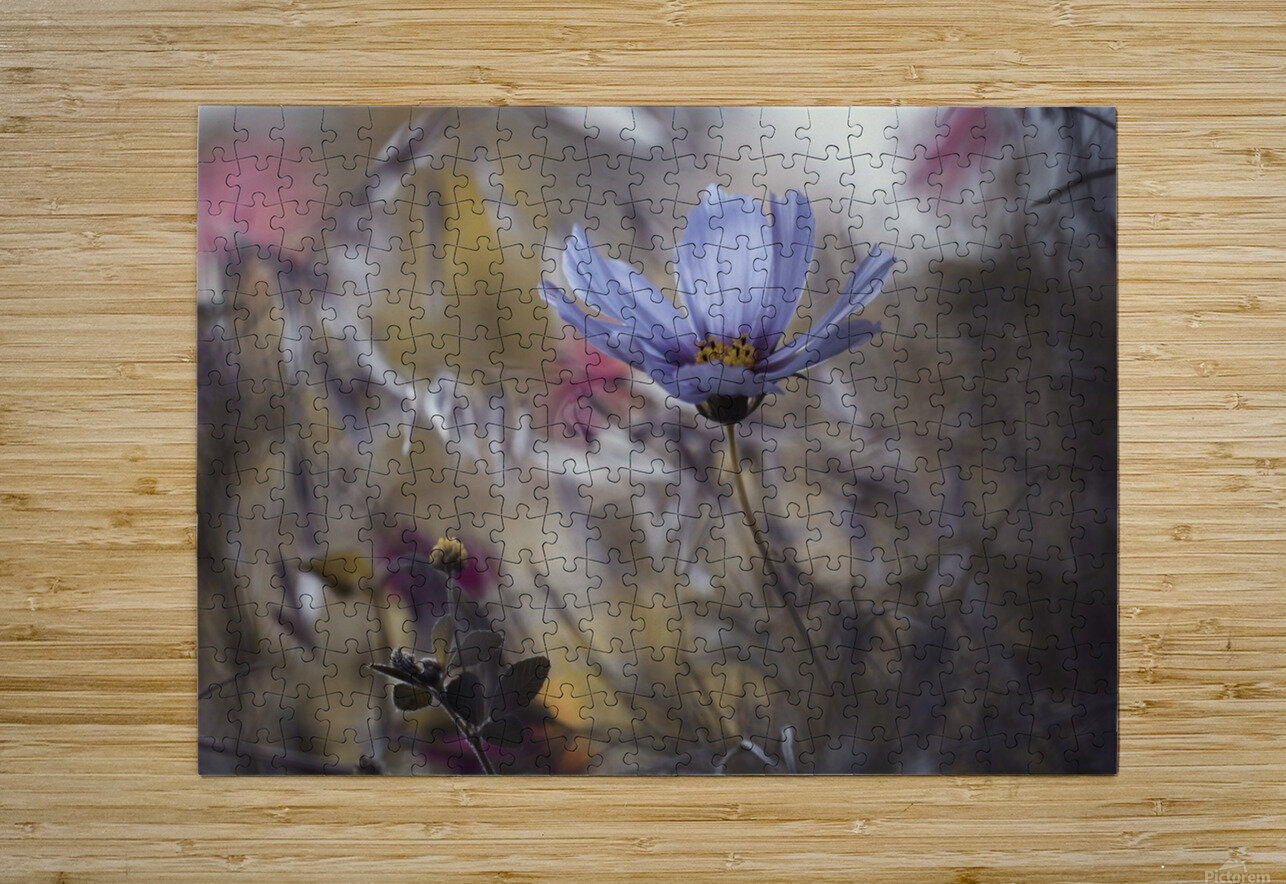 Things that flowers tell  HD Metal print with Floating Frame on Back