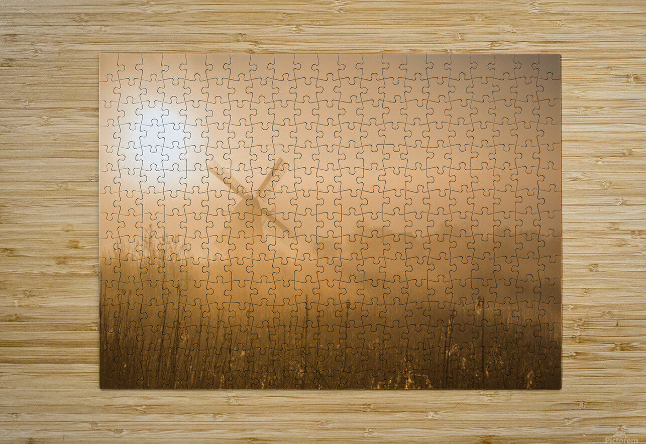 Golden Dawn.  HD Metal print with Floating Frame on Back