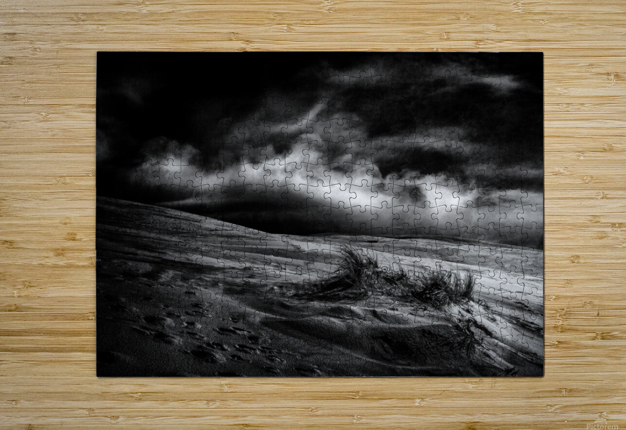 marram grass  HD Metal print with Floating Frame on Back