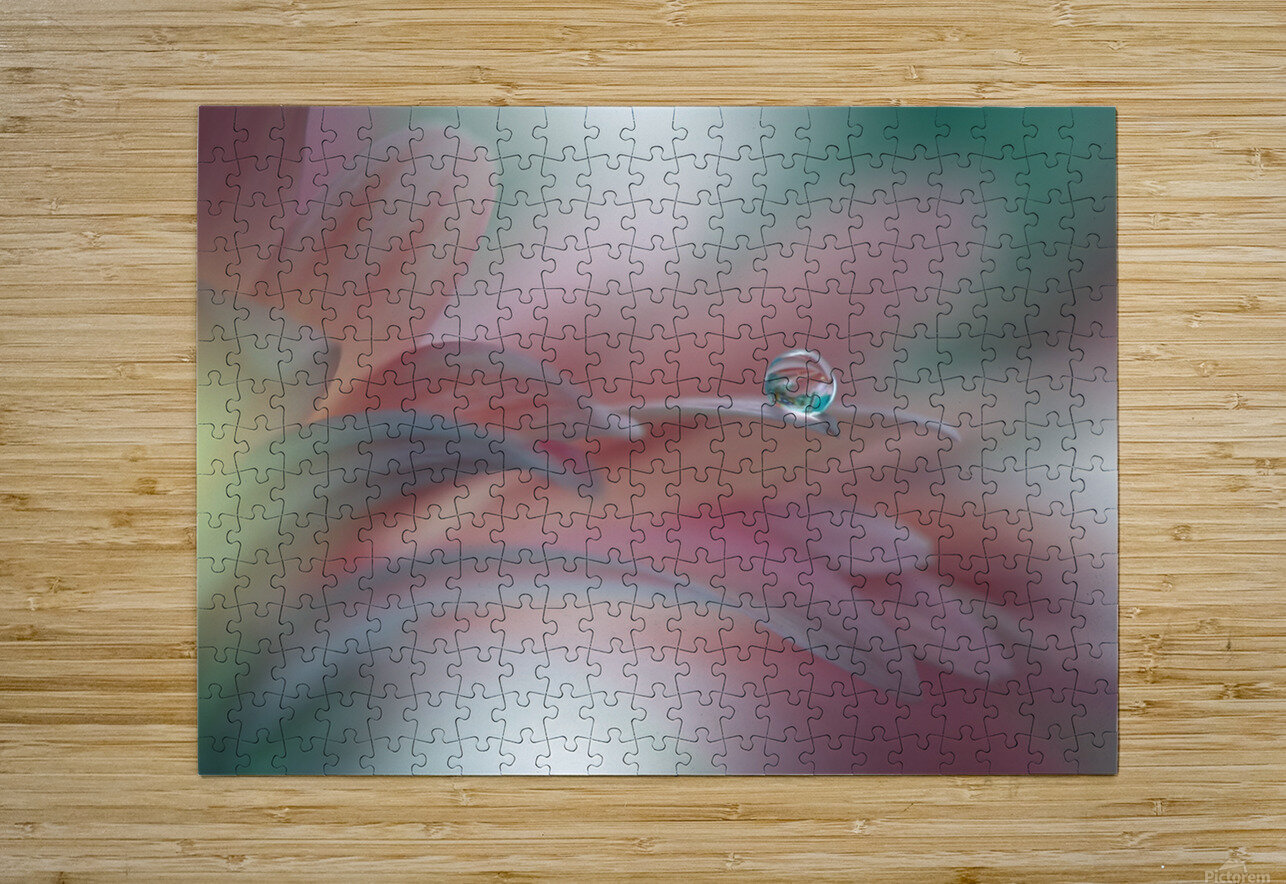 Sunbeam..II  HD Metal print with Floating Frame on Back