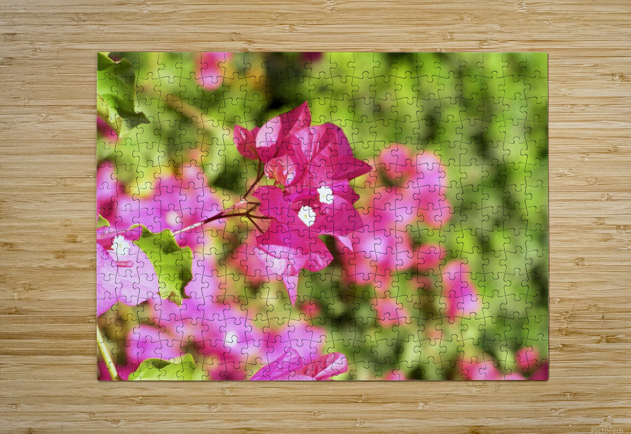 Flower39  HD Metal print with Floating Frame on Back