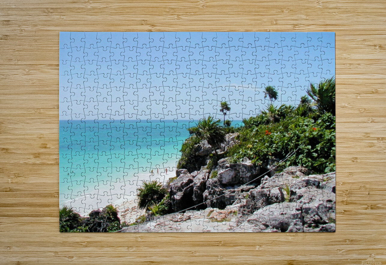 Tropical10  HD Metal print with Floating Frame on Back