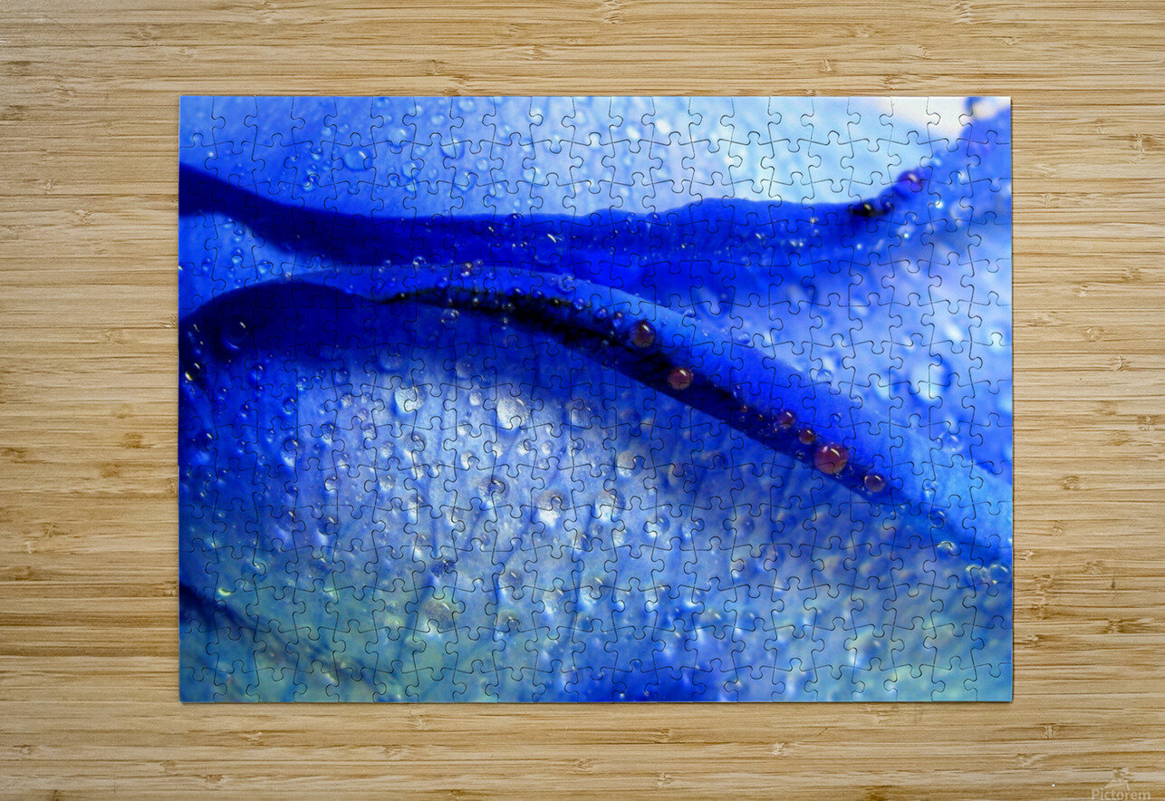 Blue Lips  HD Metal print with Floating Frame on Back