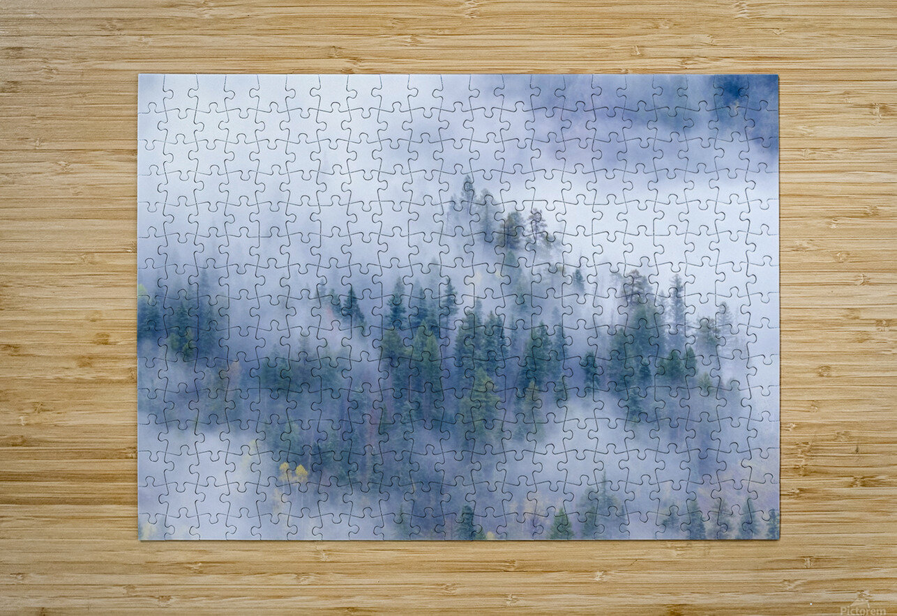 FOREST IN THE CLOUDS  HD Metal print with Floating Frame on Back