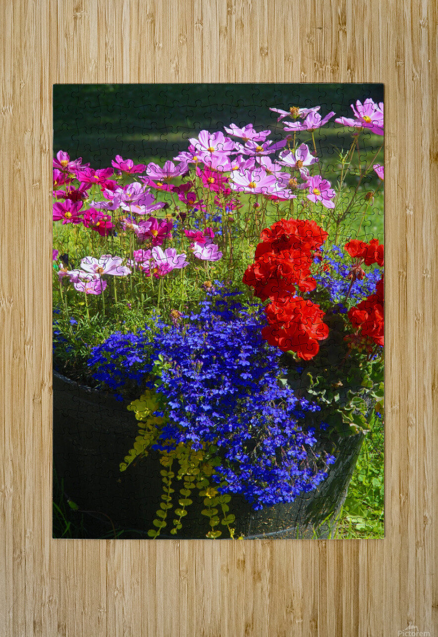 Alaskan Bouquet  HD Metal print with Floating Frame on Back