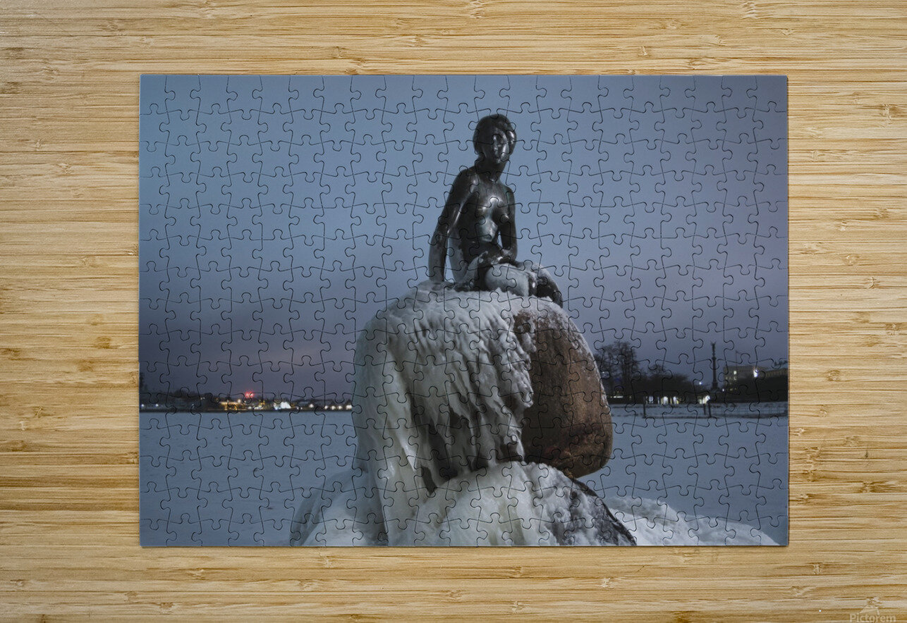 Frozen statue of The Little Mermaid  HD Metal print with Floating Frame on Back