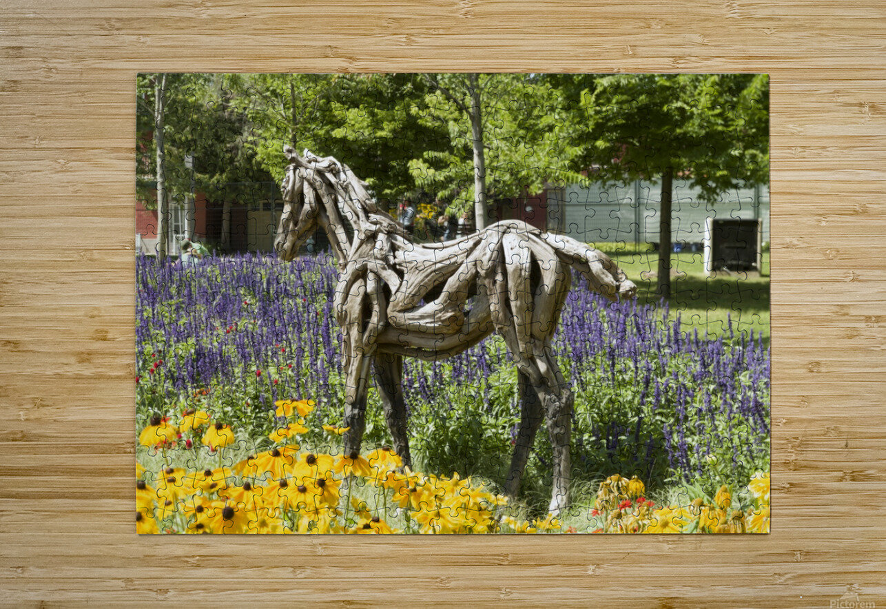Odyssey the horse and Hope the Colt sculptures made of driftwood by Heather Jansch. 2  HD Metal print with Floating Frame on Back
