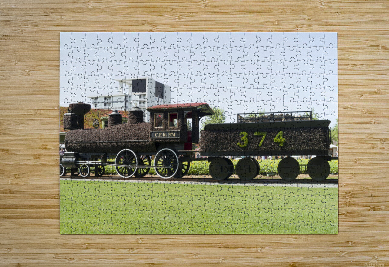 CPR train 374  HD Metal print with Floating Frame on Back