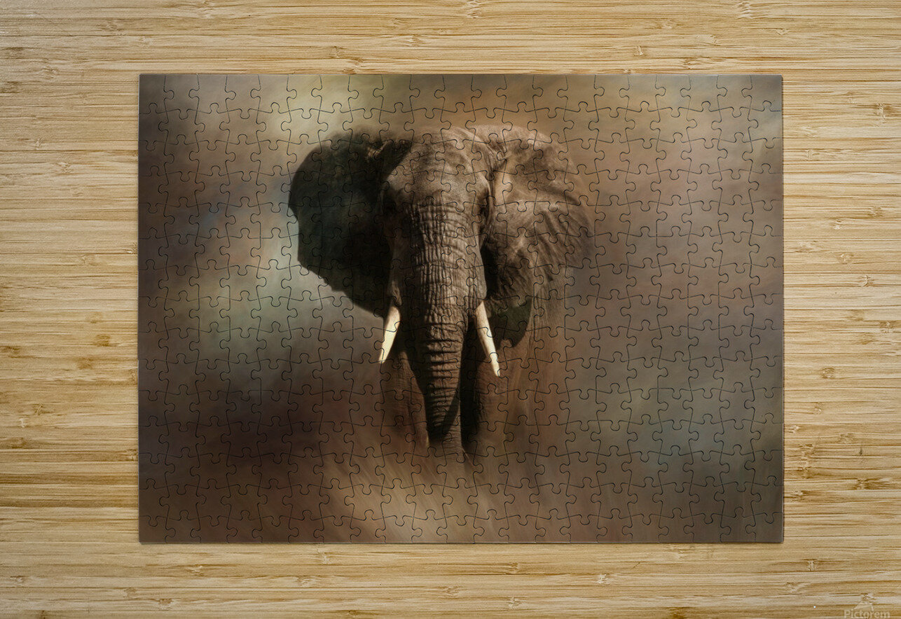 African Elephant  HD Metal print with Floating Frame on Back