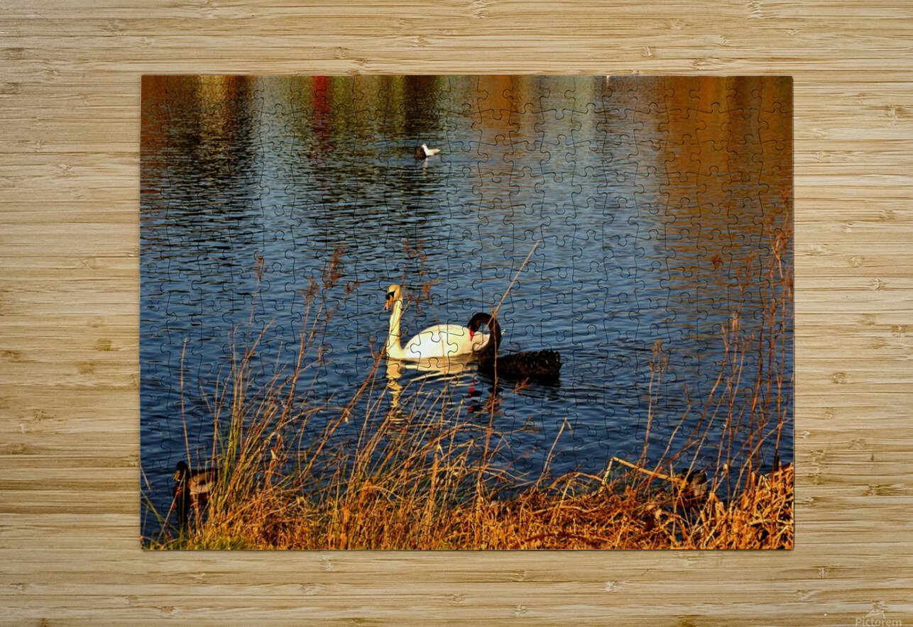 JPT_8829 2  HD Metal print with Floating Frame on Back