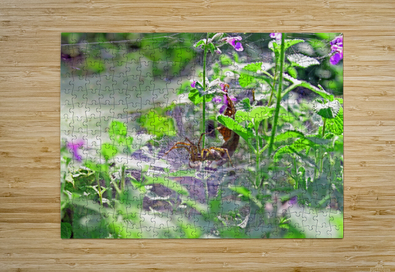 Crawling  HD Metal print with Floating Frame on Back