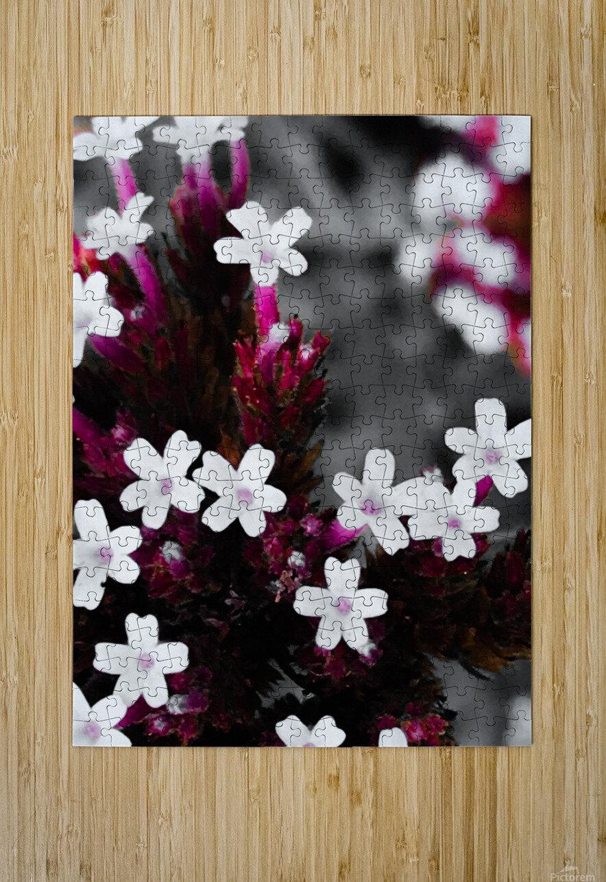 White bloom  Impression métal HD avec cadre flottant sur le dos