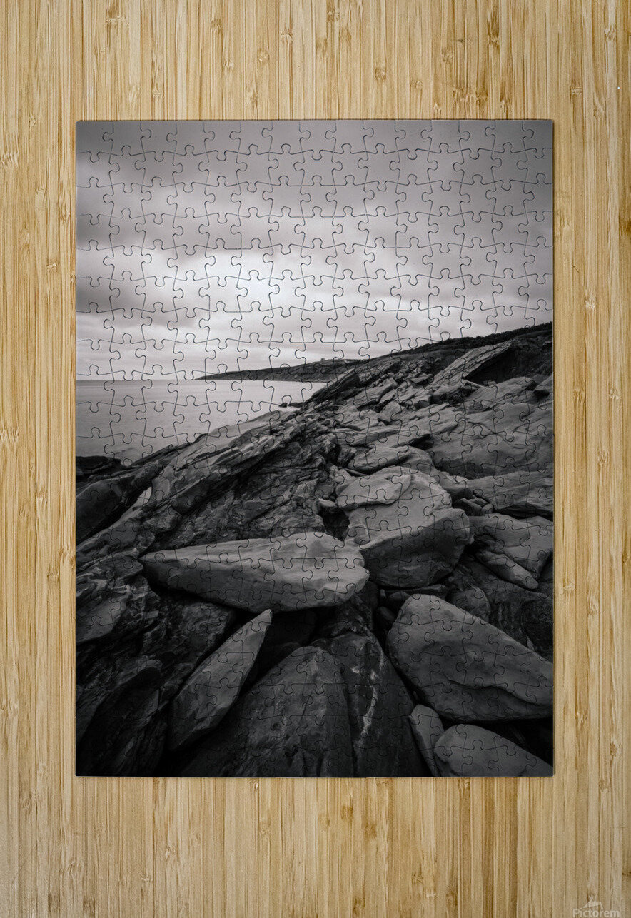 Gloomy days  HD Metal print with Floating Frame on Back