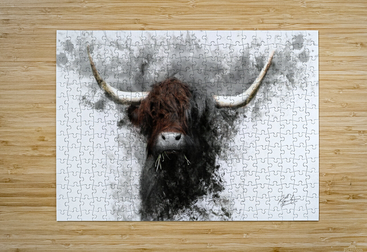 Highland Cow in Ink  HD Metal print with Floating Frame on Back