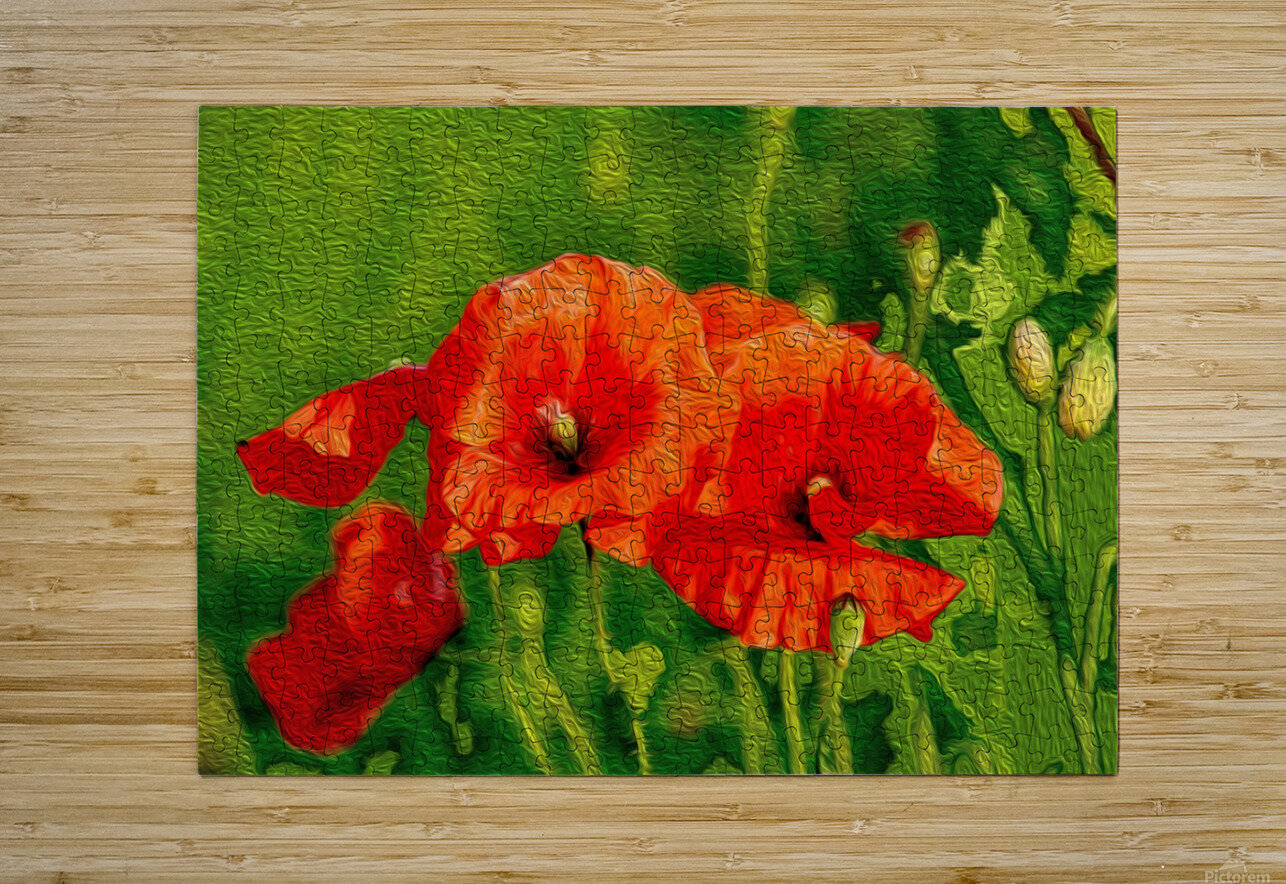 Red Poppies  HD Metal print with Floating Frame on Back