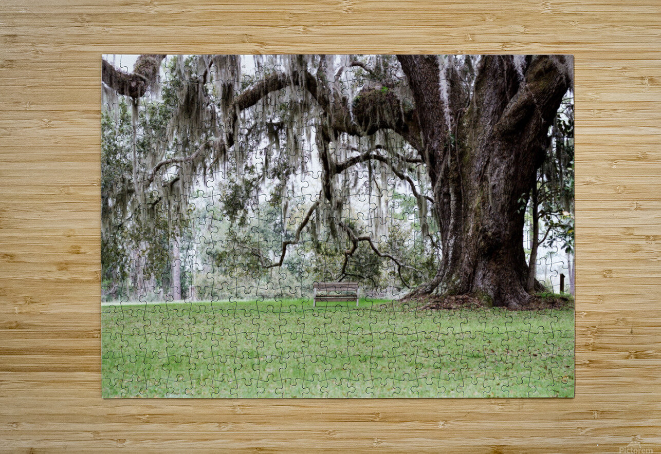 Hello Bubba  HD Metal print with Floating Frame on Back