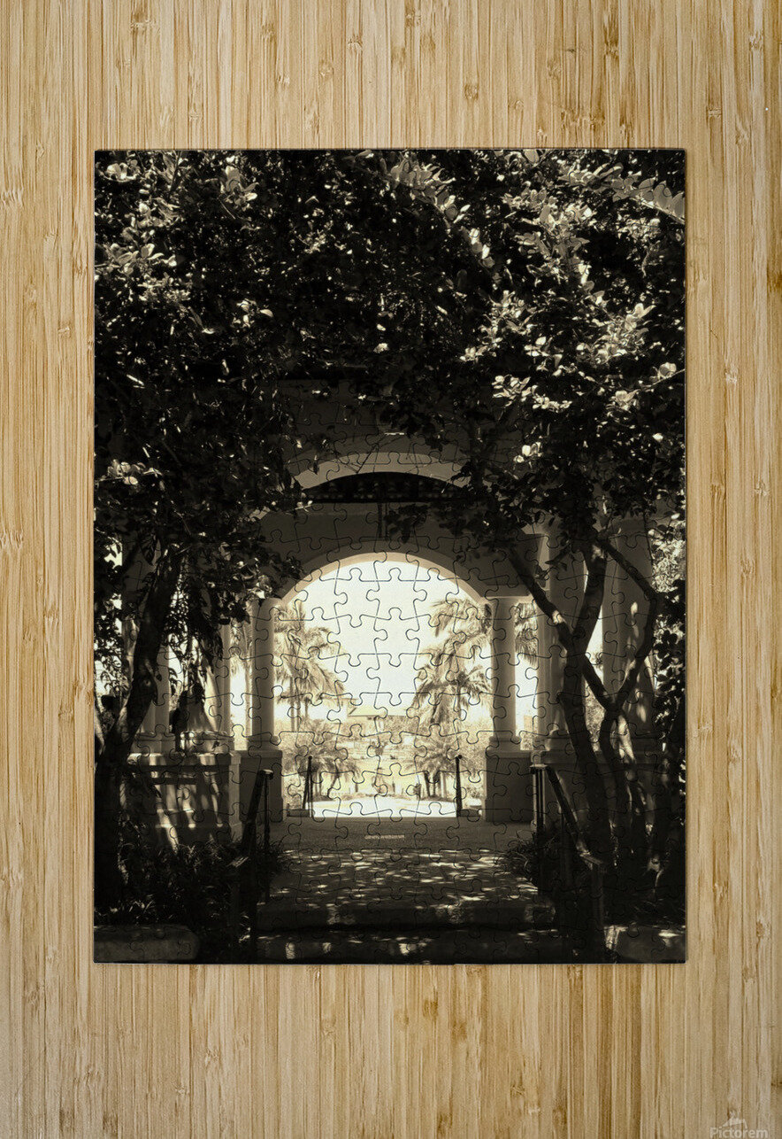 20190406_150614  HD Metal print with Floating Frame on Back