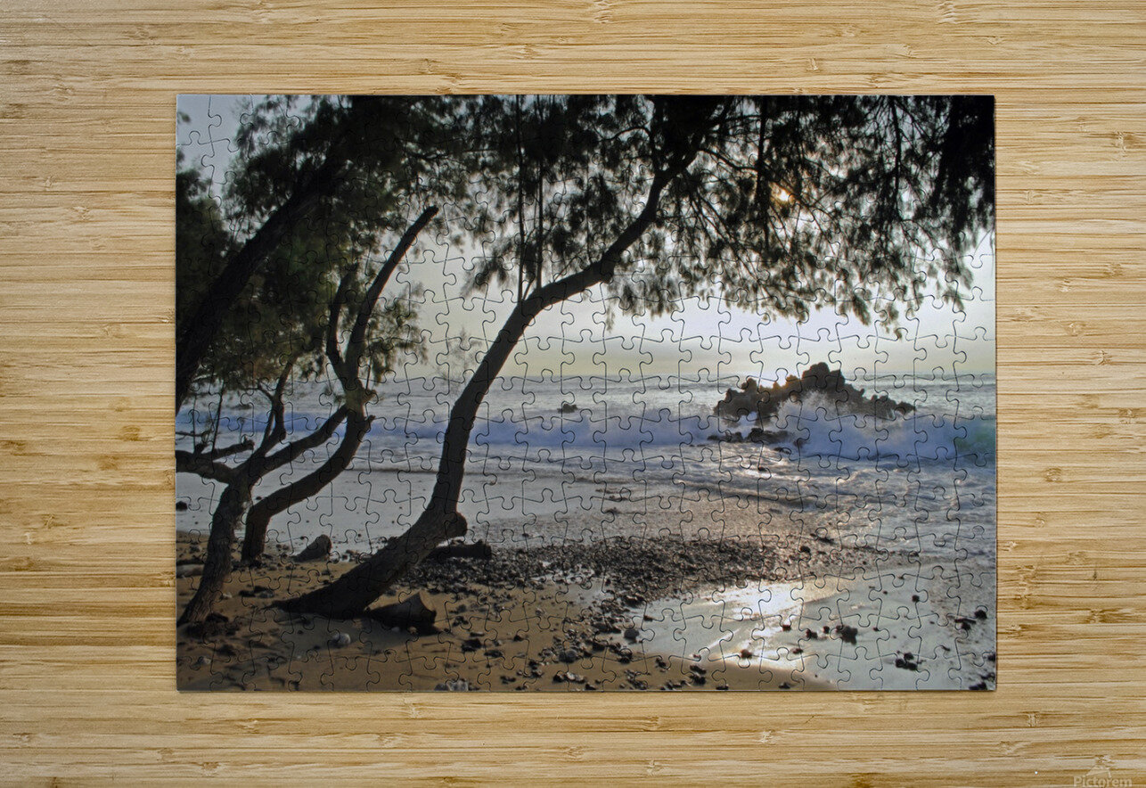Wild Hawaii Beach  HD Metal print with Floating Frame on Back