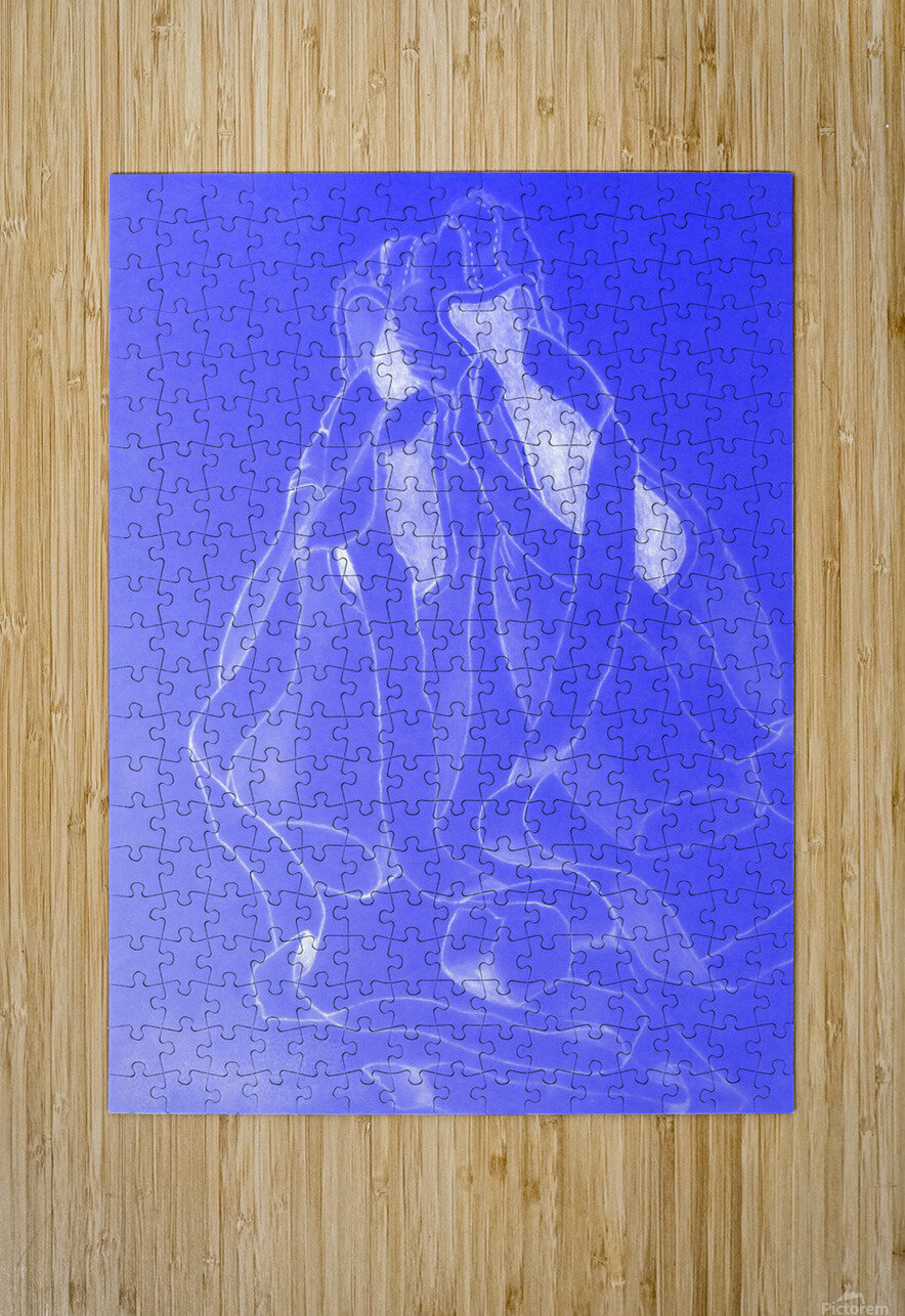 Celestial Pointe Shoes  HD Metal print with Floating Frame on Back