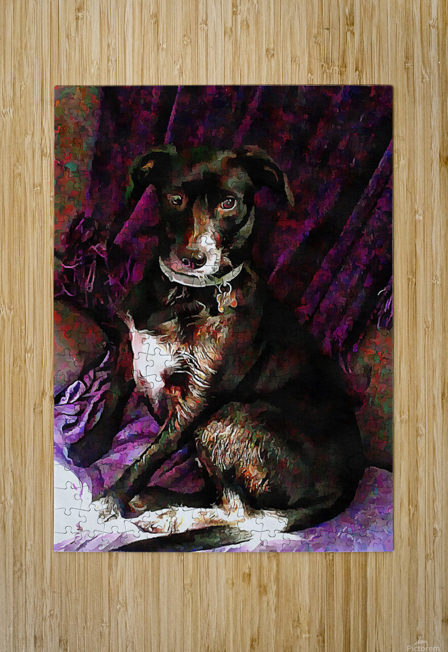 Purple Posing Puppy  HD Metal print with Floating Frame on Back
